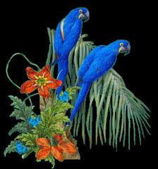 www.patsiri.com