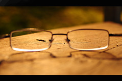 Understanding (Porfidax) Tags: world park wood light people brown rome color love 35mm bench point gold glasses nikon different view bokeh understanding watc d5000 nikonclubit
