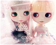 ♥ Coco & Sunny ♥