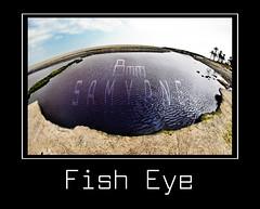 Fish Eye (Jorge_Rey) Tags: sea water photoshop agua nikon text 8mm hdr marbella lightroom puertobans samyang cs5 d3000