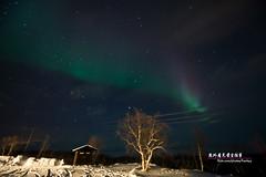Northern Lights/ (frank y) Tags: winter nightshot sweden lappland   northernlights franky abisko norrsken  nikon1424mmf28g
