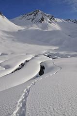 Val Torta - valle incantata... (Photo by Lele) Tags: white snow switzerland ticino blu fiume val cielo neve di sole svizzera sassi bianco torta pelle foca ghiaccio salita ghiacciaio capanna racchette ciaspole cristallina basodino bedretto
