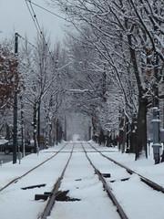 Tracks (historygradguy (jobhunting)) Tags: winter snow boston ma vanishingpoint massachusetts tracks newengland rails mbta mass bostonist bigmomma universalhub herowinner