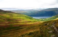 miss you Scotland (la cegna) Tags: scotland beautifulview benvorlich heatherfields