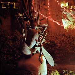 (buttha) Tags: sculpture 120 6x6 film night analog mediumformat lights sanmarino luci notte scultura hasselblad500cm kodakportra800 analogico medioformato autaut tetenalcolortecc41 canoncanoscan8800f carlzeissplanarcf80mmf28t kodakportra8001600