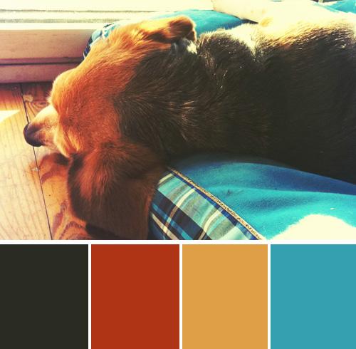 color-palette-blog-beagles-meadow