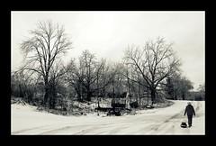 the junkyard (kelly.grace) Tags: winter snow junk nikon michigan tracks junkyard d40 farmjunk farmjunkyard