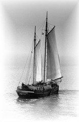 Heading for Terschelling (Guido Havelaar) Tags: bw terschelling wadden sailing ship schwarzweiss pretoebranco noirblanc platbodem 黑白色 neroeblanco ブラックホワイト чорныбелы