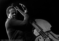 Mr. Clarke... Doing what he does. (spw11) Tags: stanleyclarke granadatheaterdallas