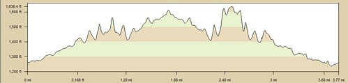 Big Dalton Dam Elevation Profile