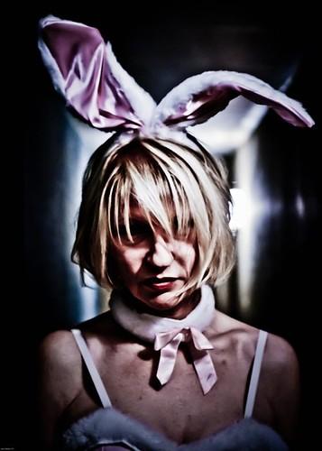 serial bunny