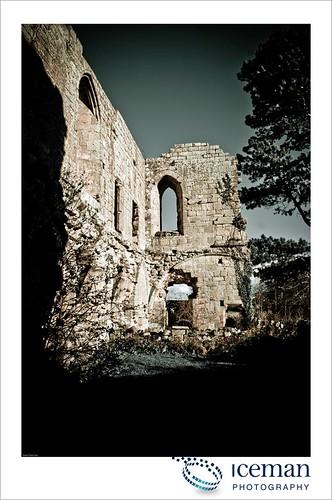 Jervaulx Abbey 031