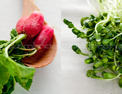 french breakfast radish and sunflower sprout tartines (Gourmande in the Kitchen) Tags: green vegetables spring radish foodphotography sunflowersprouts tartines lightmeal frenchbreakfastradish gourmandephotography gourmandeinthekitchen sylvieshiraziphotography butterandradishes springradishes