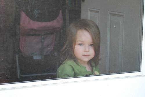 Savannah watching from inside