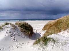 Barra sand dunes (Island Adventurer) Tags: landscape scotland barra outerhebrides