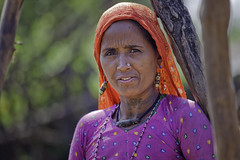 Gujarat : Gir Forest, Maldhari #10 (foto_morgana) Tags: portrait people woman india tattoo asia tribal earrings tribe ethnic ness gujarat charan herdsmen adivasi saurashtra girforest maldhari nomadicpeople bhavnagardistrict