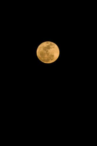 Moon 03.19.2011