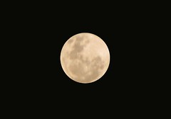 Supermoon - deeper interest (ibraaahim) Tags: moon close earth super maldives orbit astrology elliptical velidhoo supermoon