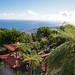 Jardim Tropical Monte Palace_2