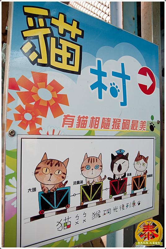 2011-03-19侯硐阿喵村  (3)