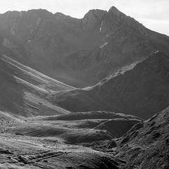 (Mat-S) Tags: horse cheval pyrnes summer t coldepierrefite mountain noiretblanc blackandwhite silverefexpro silhouette