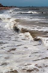 Coney Island (nyperson) Tags: beach coneyisland curl hermine