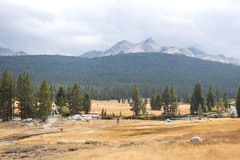 _DSF5430-2 (pixel-ninja) Tags: yosemite nationalpark california tuolumnemeadows