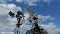 Mast Foos Iron Turbine and Southern Cross ASB pattern windmills; Jondaryon Woolshed, Queensland, Australia (sarracenia.flava) Tags: mast foos iron turbine southern cross a pattern windmill jondaryon woolshed museum queensland qlfd australia darling downs southerncross