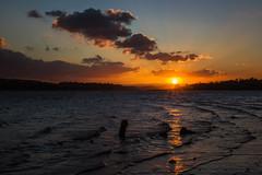 Teign estuary sunset (jonbawden50) Tags: teignmouth