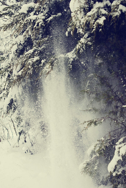 "Snow ""fall"""