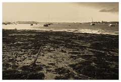 Foreshore in sepia (Rich3591) Tags: sun beach sepia geotagged boats hampshire portsmouth southsea foreshore langstoneharbour challengeyouwinner coastuk sigmadp1s geo:lat=50795243 geo:lon=103048 welcomeuk