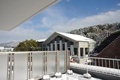 DSC_0609 (kubotake) Tags: snow   20111  d700