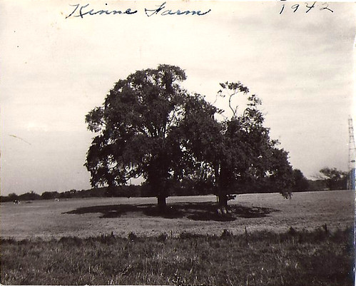 Kinne Farm 1942