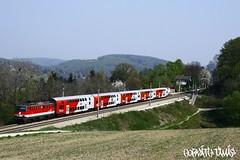 1142 586-5, 12.04.2009, Unter-Oberndorf (mienkfotikjofotik) Tags: eisenbahn railway bahn bb kolej sterreichische vast bundesbahnen bb