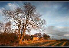 Rainford Brook farm.... (Digital Diary........) Tags: sunset sky tree landscape warm farm sthelens crank chrisconway rainford goodlight billinge rainfordbrookfarm