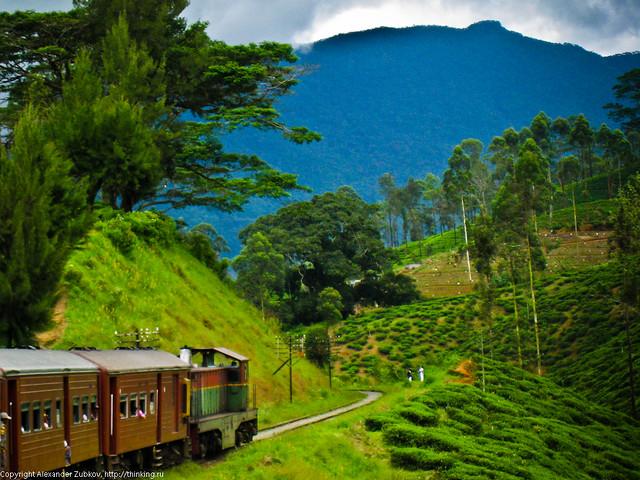Поезд и голубая гора