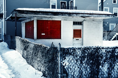 happiness once was (Violentz) Tags: winter red snow building architecture fence store vendor virginmary southboston southie virginmarystatue utata:project=tw251
