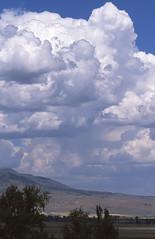 North of Cedarville, CA           (488) (VFR Rider) Tags: california ca eos fuji epson provia perfection modoc 100f 1v v500