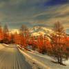 red trees (rinogas) Tags: trees sunset italy mountain snow ski clouds torino nikon piemonte hdr sestriere nikkor1224 valledisusa rinogas