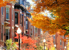 Autumn Glow (brooksbos) Tags: city autumn trees light urban orange sun colour leaves yellow geotagged ma photography photo sony south newengland cybershot historic foliage end colourful bostonma sonycybershot townhouses bostonist masschusetts lurvely 02116 everyblock thatsboston dschx5v hx5v brooksbos southend