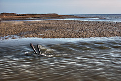 Out Flow (Chase Schiefer) Tags: sunset sea nature outdoors photography salt marsh hdr highdynamicrange nikond90 saltmarshcordgrass chaseschieferphotography seabreezenewjersey seabreezenj saltmarshnewjersey