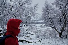 Once again I take a photo that looks like a bad Photoshop mistake (BinaryApe) Tags: uk snow weather walking countryside derbyshire peakdistrict edale ef28135mmf3556isusm edaletocastleton