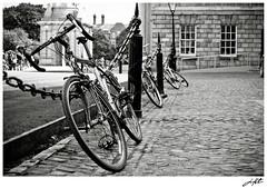 Quintessential Ireland   I Want To Ride My Bicycle   Dublin, County Dublin, IE   B&W (HuTDoG83) Tags: ireland bw dublin white black college monochrome bike bicycle trinitycollege monochromatic eire cobblestone trinity quintessential