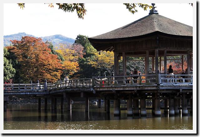 20101116_114210_奈良公園_浮見堂