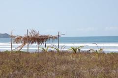 Guiones Hut (MarkL3883) Tags: ocean girls sunset beach girl costarica surf waves surfing beaches negra nosara pelada garza playaguiones guiones playanegra playapelada playanosara lagartalodge playagarza nosararivermouth