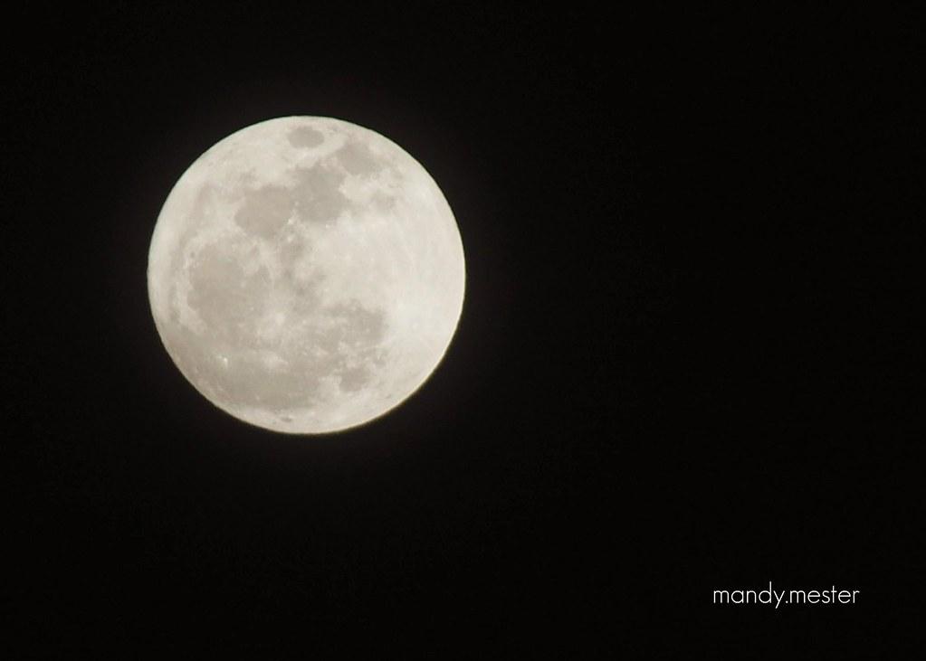 moon, 2011