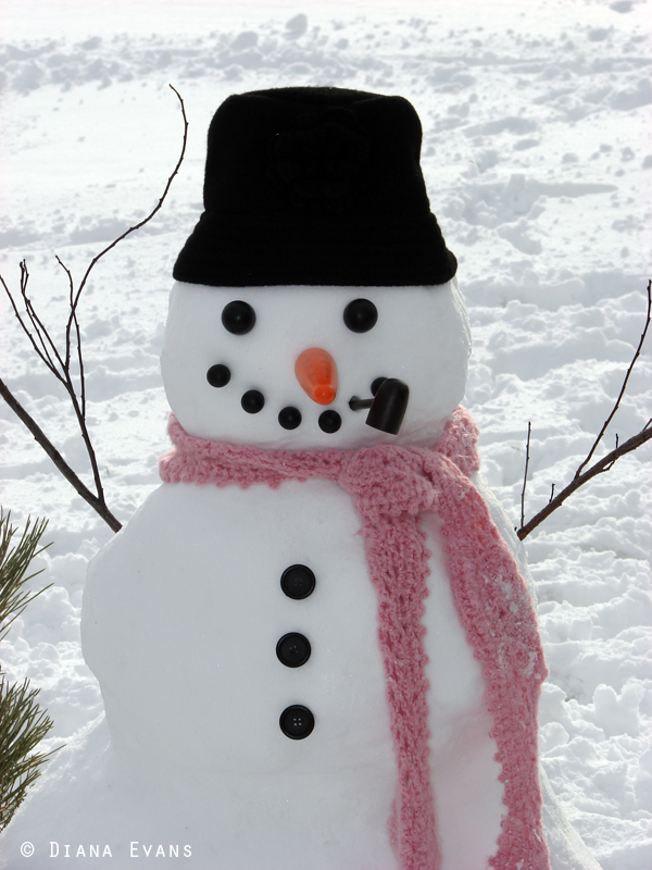 February 25th 2011 - snowman day 046