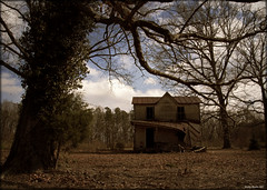 Three post short (History Rambler) Tags: old house tree abandoned home rural virginia rust south vacant decayed tinroof mecklenburgcounty oncewashome