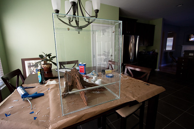 The Magnets Are Placed So That One Is Inside The Vivarium And One Is Outside The Door So It Is Glass On Glass In Between Essentially Fly Proofing The Door . & Custom Vivarium Doors \u0026 I\\u0027m Not Doing Any More Woodwork Until ... Pezcame.Com