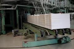 DSC_0279 (mitrataj) Tags: paper sumatra indonesia april redd acacia papermill deforestation riau pulpwood riauandalanpulppaper